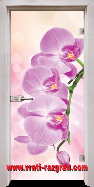 Стъклена интериорна врата модел Print G 13-3 Pink Бреза